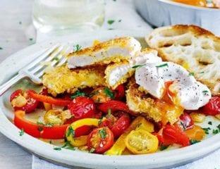 Crispy halloumi with spicy pepper and tomato salsa