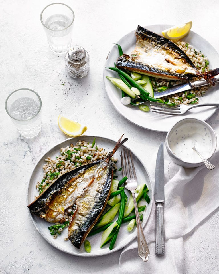 Grilled mackerel with herb yogurt and pearl barley