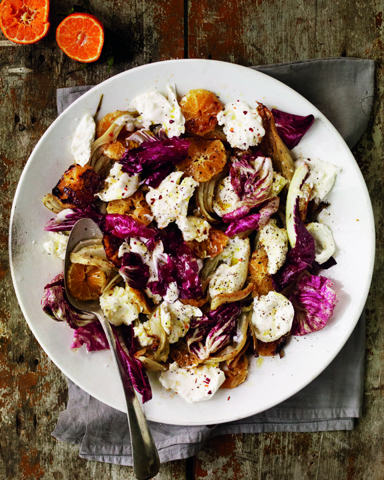 Roast fennel, clementine, burrata and chilli salad
