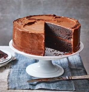 14 best chocolate cake recipes