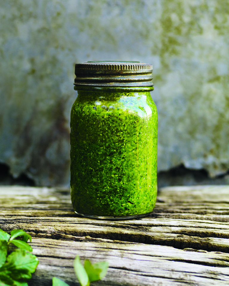 Wild garlic and hazelnut pesto