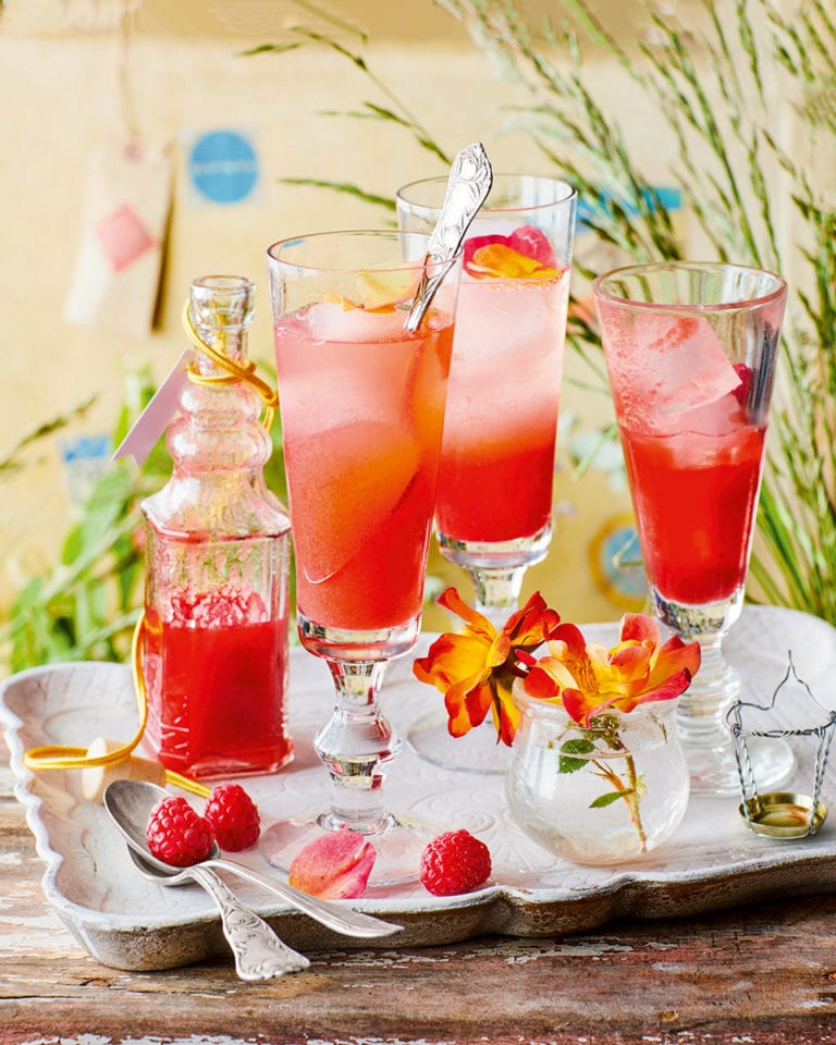 Raspberry and rosewater cordial with fizz